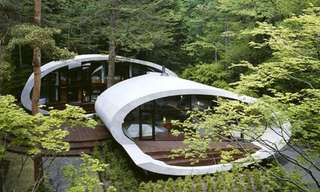 The Shell House - The Most Amazing House