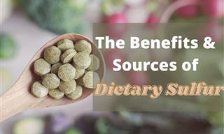 7 Great Sources of Sulfur and Their Health Benefits