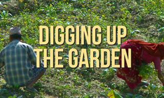 Joke: Digging Up the Garden