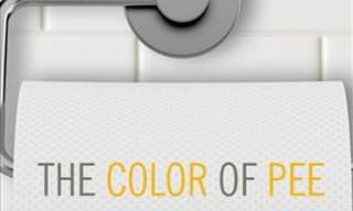 What the Color of Your Urine Means
