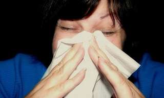 10 Easy Allergy Prevention Techniques