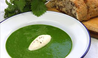 How to Make a Tasty Nettle Soup