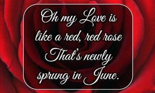 A Beautiful Poem by Robert Burns