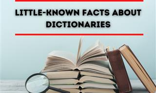 Fun Facts About the Dictionary You Would Not Like to Miss