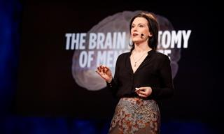 Expert Neuroscientist Explains the Effect of Menopause on the Brain