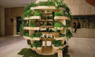 The Growroom - a Garden For Urban Environments