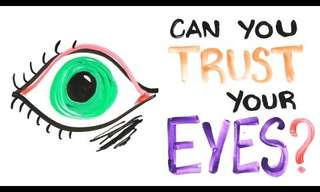 Can You Trust Your Eyes - Fascinating!
