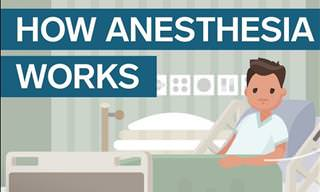 Here's How Anesthesia Works