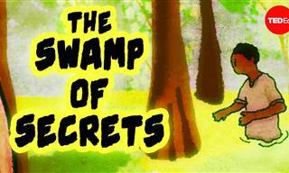 History: The Swamp of Many Hidden Secrets