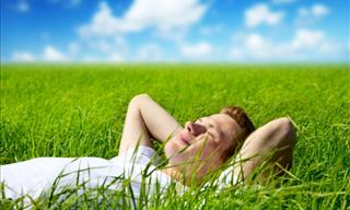 Quiz: Find Out Your Optimal Relaxation Method