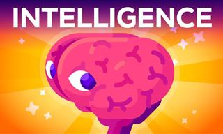 Can Intelligence Be Objectively and Realistically Defined?