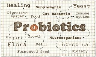 The Truth About Probiotics