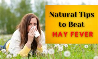7 Natural Treatments for Those Battling With Hay Fever