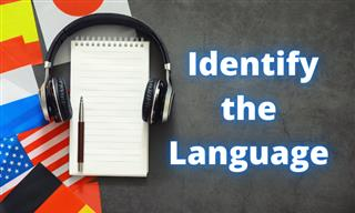 QUIZ: Which Language Is This Sentence In?