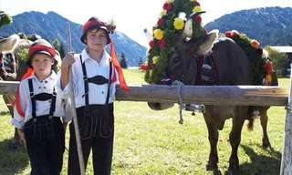 The Tyrol Cow Festival - Celebrating With 100,000 Cows!