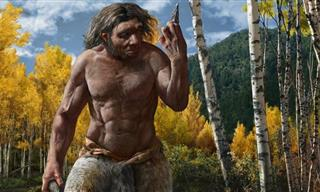 New Discovery Might Change the Story of Human Evolution