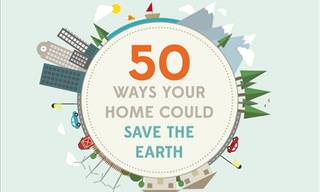 An Easy Guide to Help Reduce Your Carbon Footprint and Energy Bills