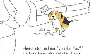 Hilarious Comics That Depict Perfectly What Animals Say!