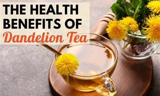 6 Remarkable Health Benefits of Dandelion Tea
