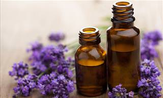 Here's Why Essential Oils Should Be Used With Caution...