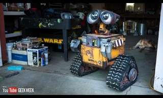 A Real Wall-E - Incredible!