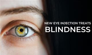 A Single Eye Injection Treats Genetic Blindness