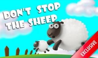 Game: Free the Sheep