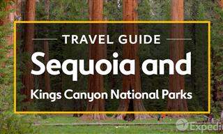 Travel Through Sequoia and Kings Canyon National Parks