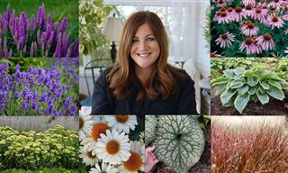 15 Gorgeous Perennials Every Garden Should Have