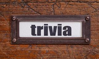 QUIZ: How About a Quick Game of Trivia?