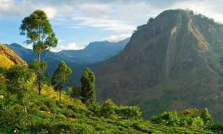 23 Highlights of Any Visit to Sri Lanka