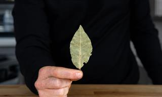 Do Bay Leaves Actually Make a Difference in a Dish?