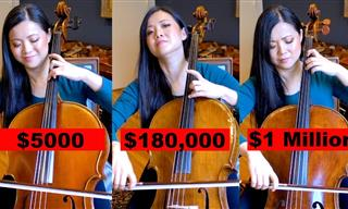 Does a $1 Million Cello Sound Better Than a Standard One?