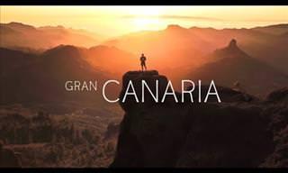 Discover Gran Canaria, the Strange Island of Many Climates