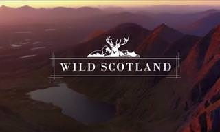 Award-Winning Drone Video of Scotland