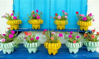 A Stylish and Cute DIY Project For Your Front Porch