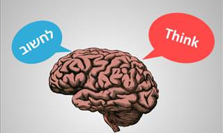 5 Ways In Which Learning a New Language Benefits Your Brain