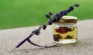 Lavender Essential Oil Has Many Uses - Here Are 12 of Them