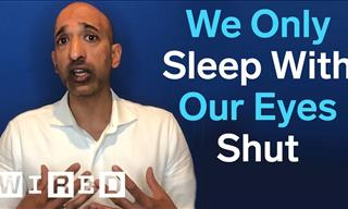 Expert Debunks the MOST Common Sleep Myths