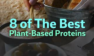 8 of the Best Plant-Based Proteins