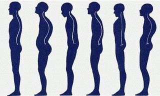 The Complete Guide to Good Posture