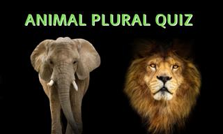 How Well Do You Know Your Animal Collective Nouns?