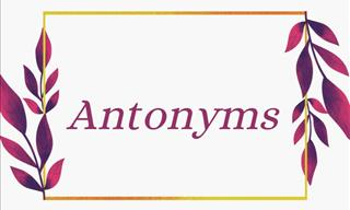 The Big ANTONYM Quiz