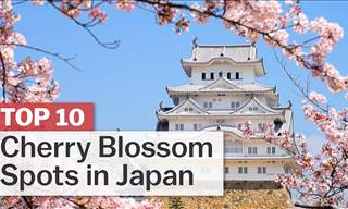 10 Best Places to See Japan's Famous Cherry Blossoms