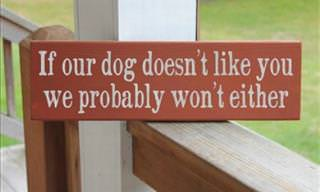'Beware Dog' Signs by Funny Owners