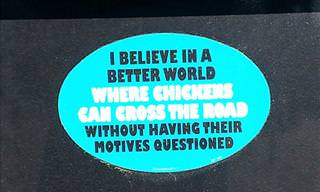 14 Funny Car Bumper Stickers