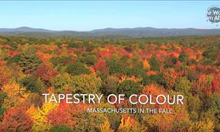 Fly Over the Beauty of Golden Massachusetts in the Fall...