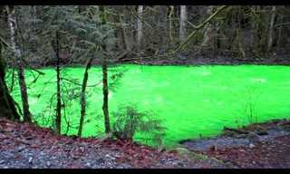 Ever Seen a Florescent Green River?