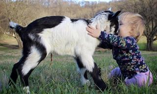 These Adorably Funny Kids and Animals Will Melt Your Heart