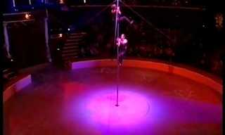 The Vertical Tango!